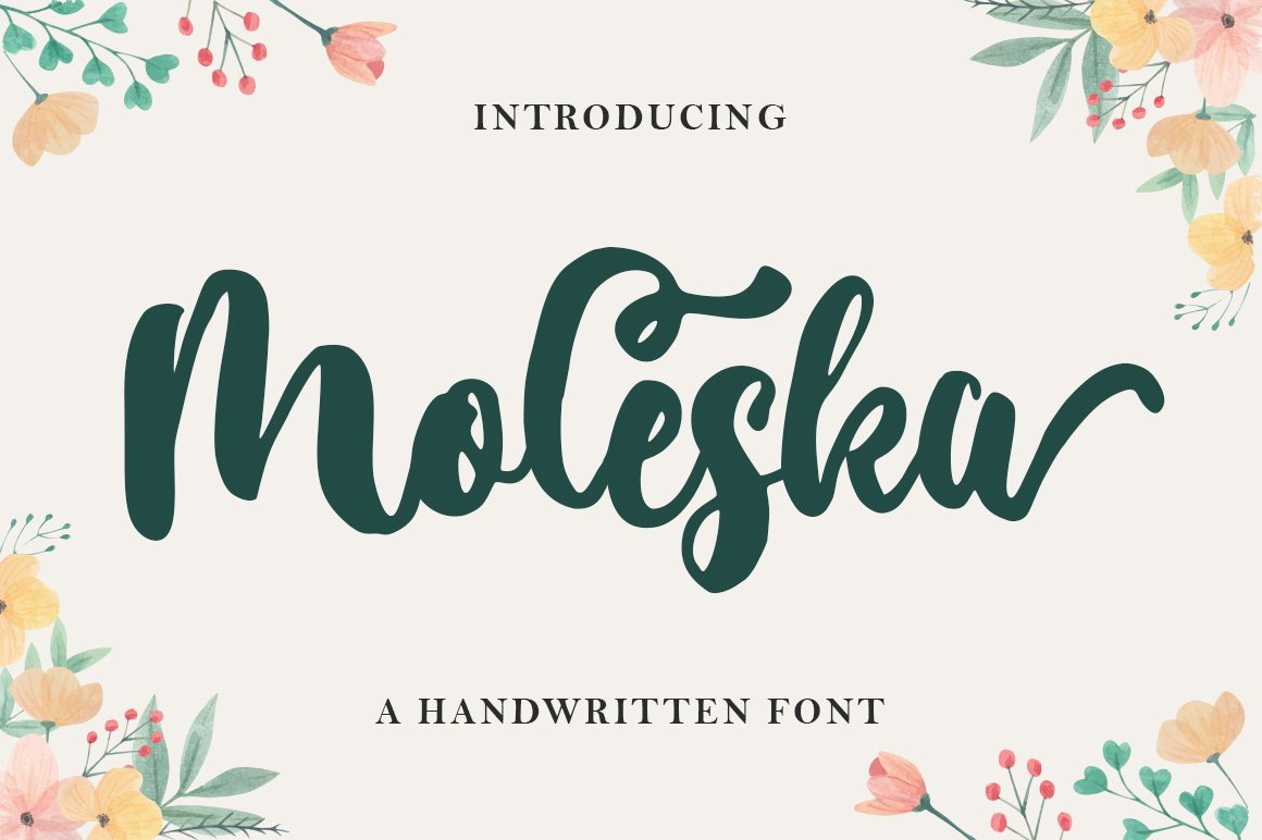 Moleska Script example image 1