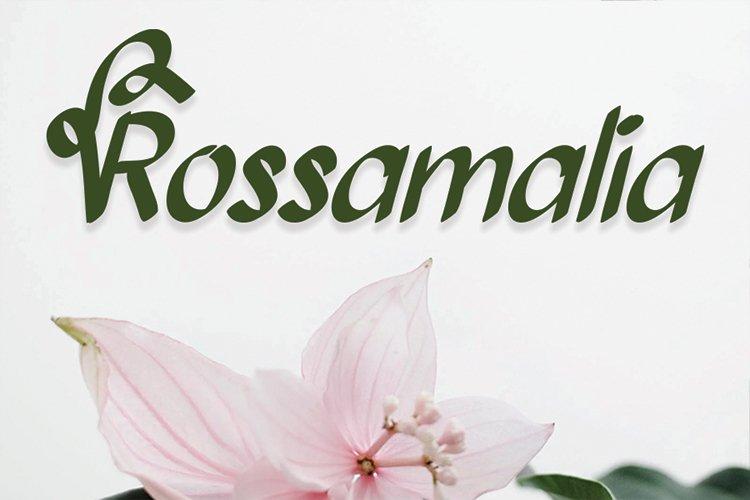 Bollanita example image 3