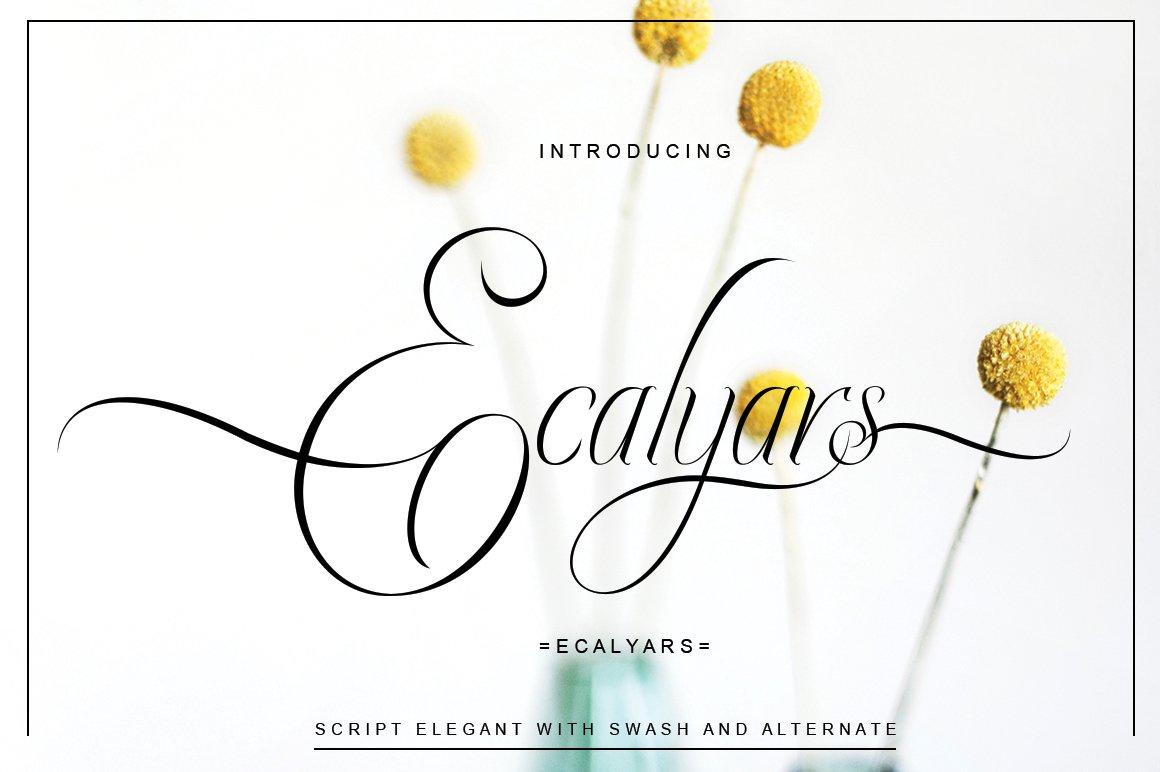 Ecalyars example image 3
