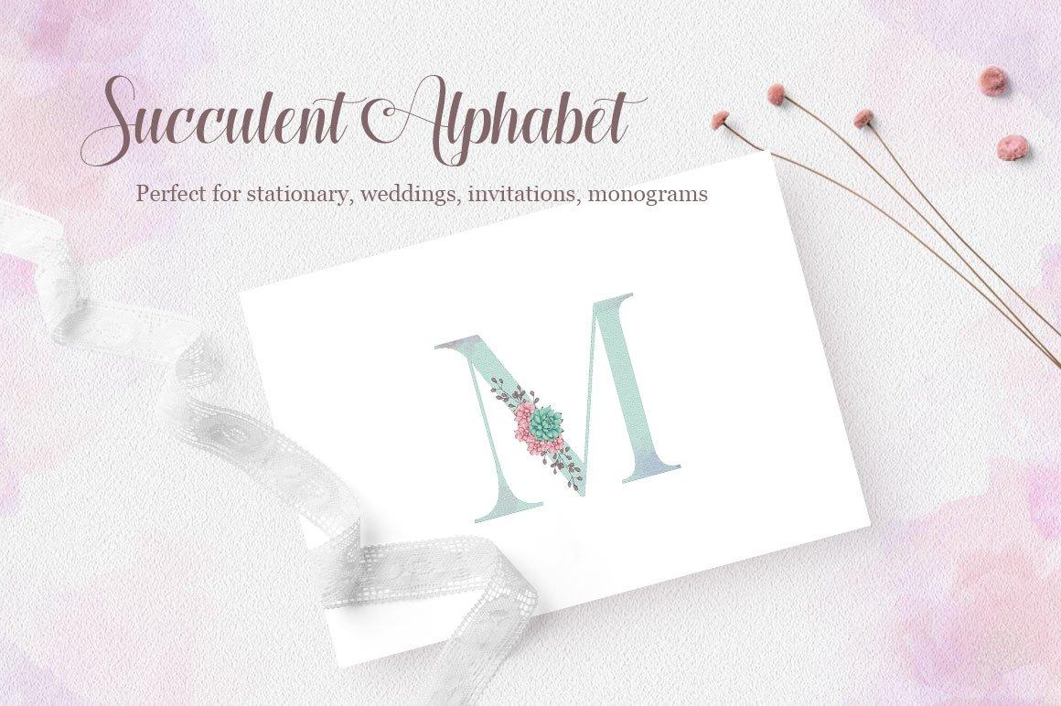 Succulent Alphabet Letters example image 3
