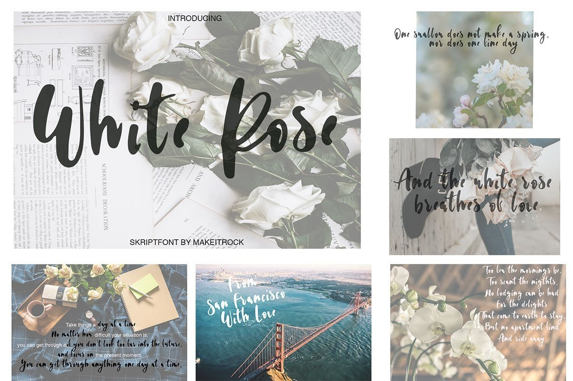Font Bundle 70 in One example image 17