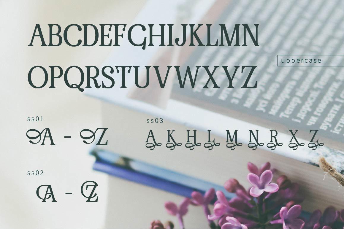 RENDA - Serif example image 8