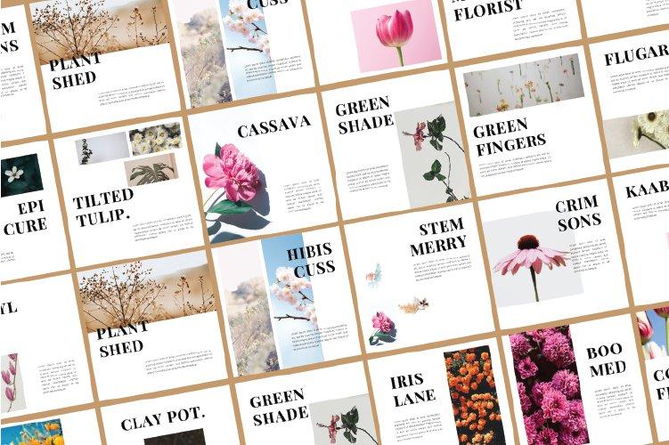 Flowers Instagram Template & Instagram Stories example image 5