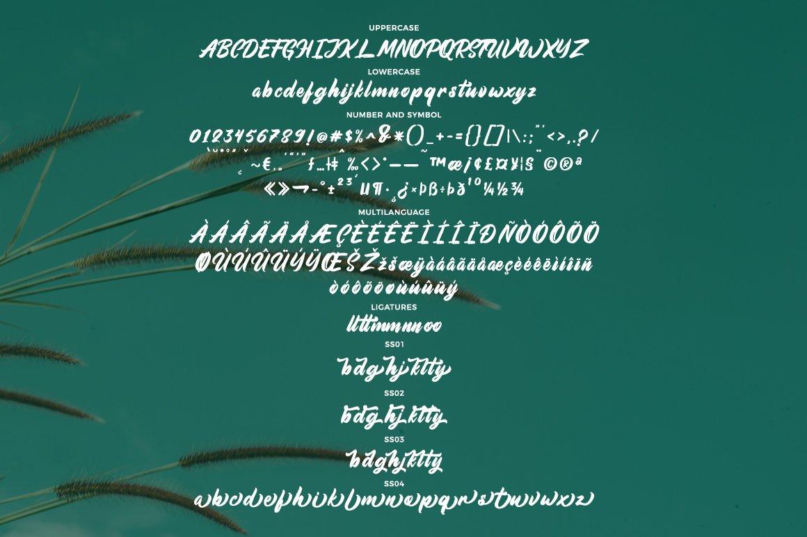 Aimchestar - Script Font example image 9