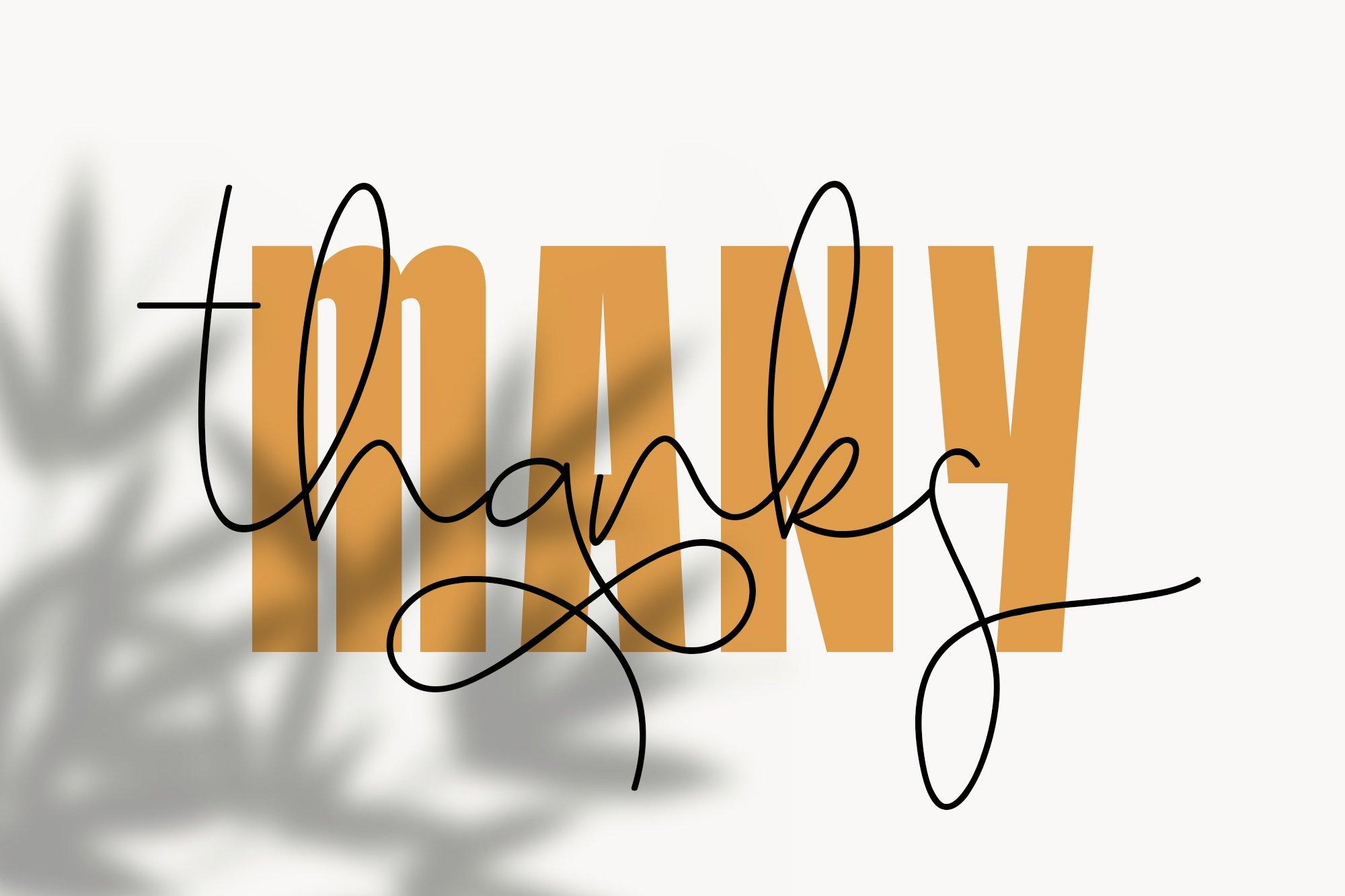 Honey Bunney Font Duo example image 12