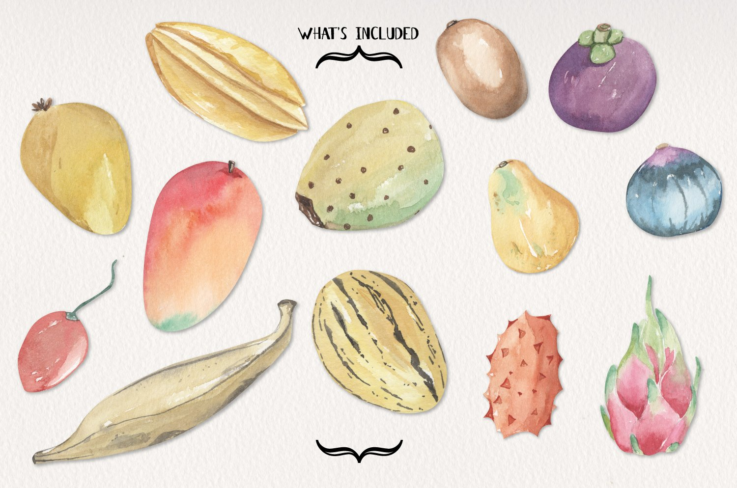 Tropical Exotic Fruit Watercolor 13 Elements Food example image 3