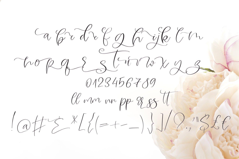Midnight Peony Script Font example image 9