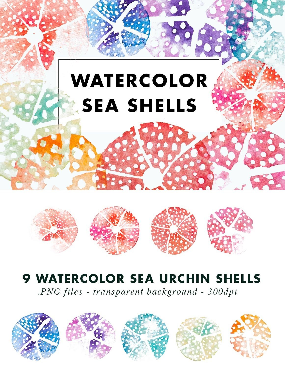 SALE | Watercolor Bundle | Best Sellers Clipart Illustration example image 5