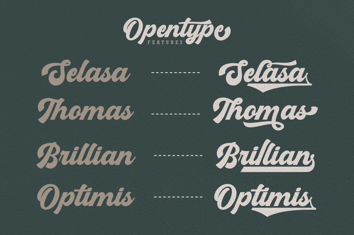 Boldmatte Bold Script Font example image 4