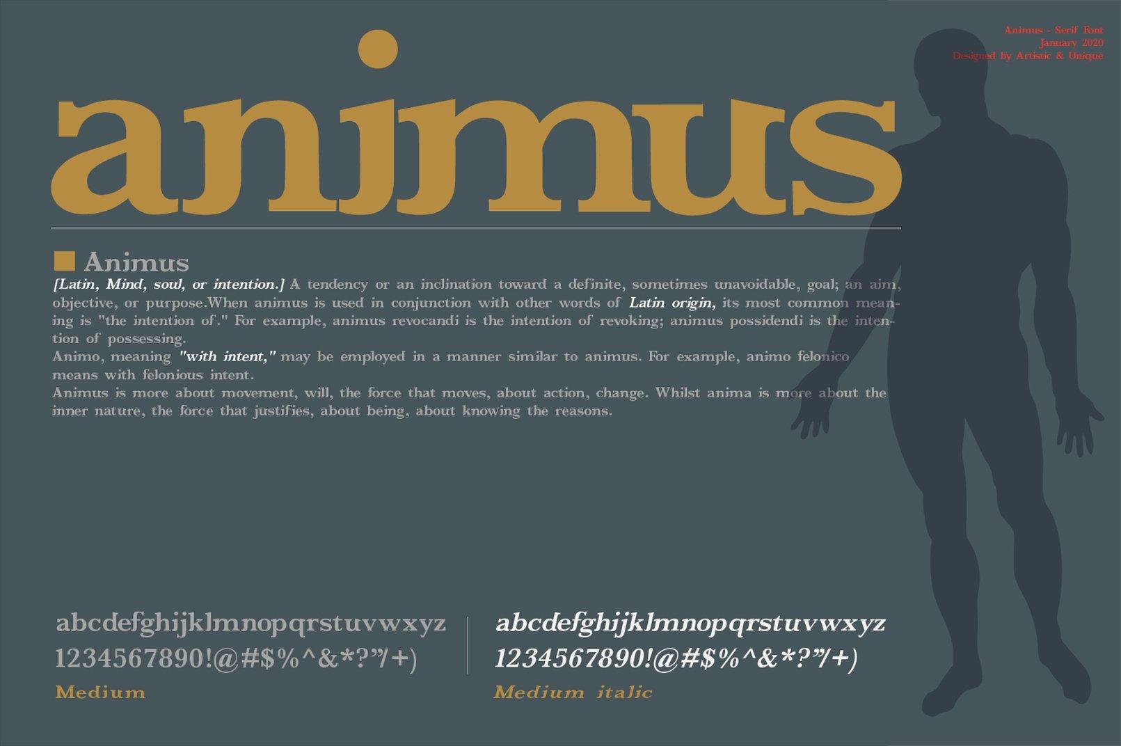 ANIMUS - Serif font family example image 11