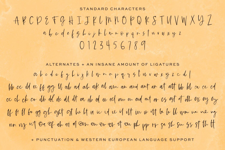 Saffron Night Signature Script example image 10