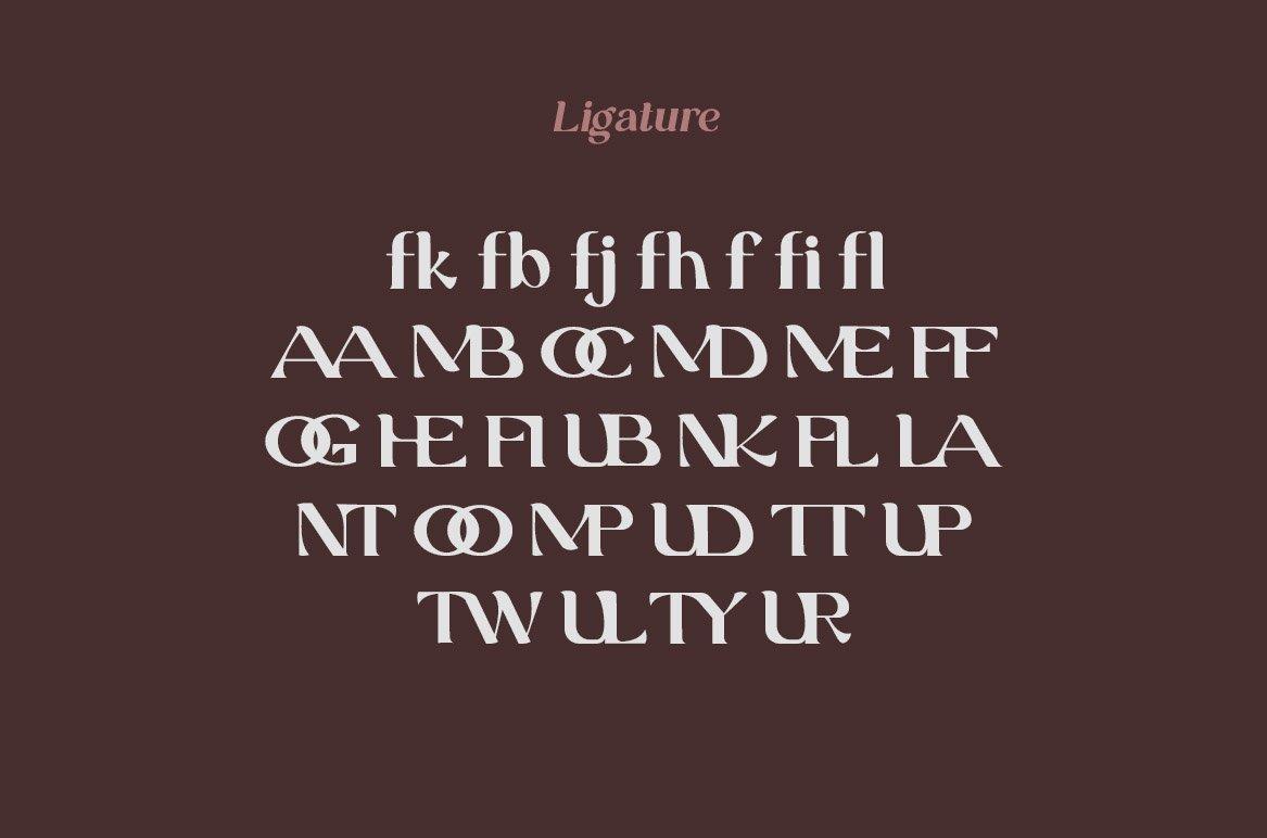Grand Duke Beauty Serif Font example image 8