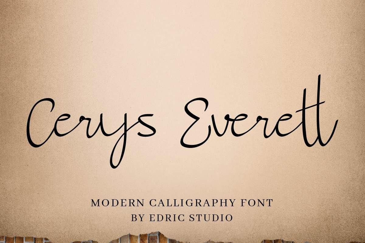 Cerys Everett example image 12