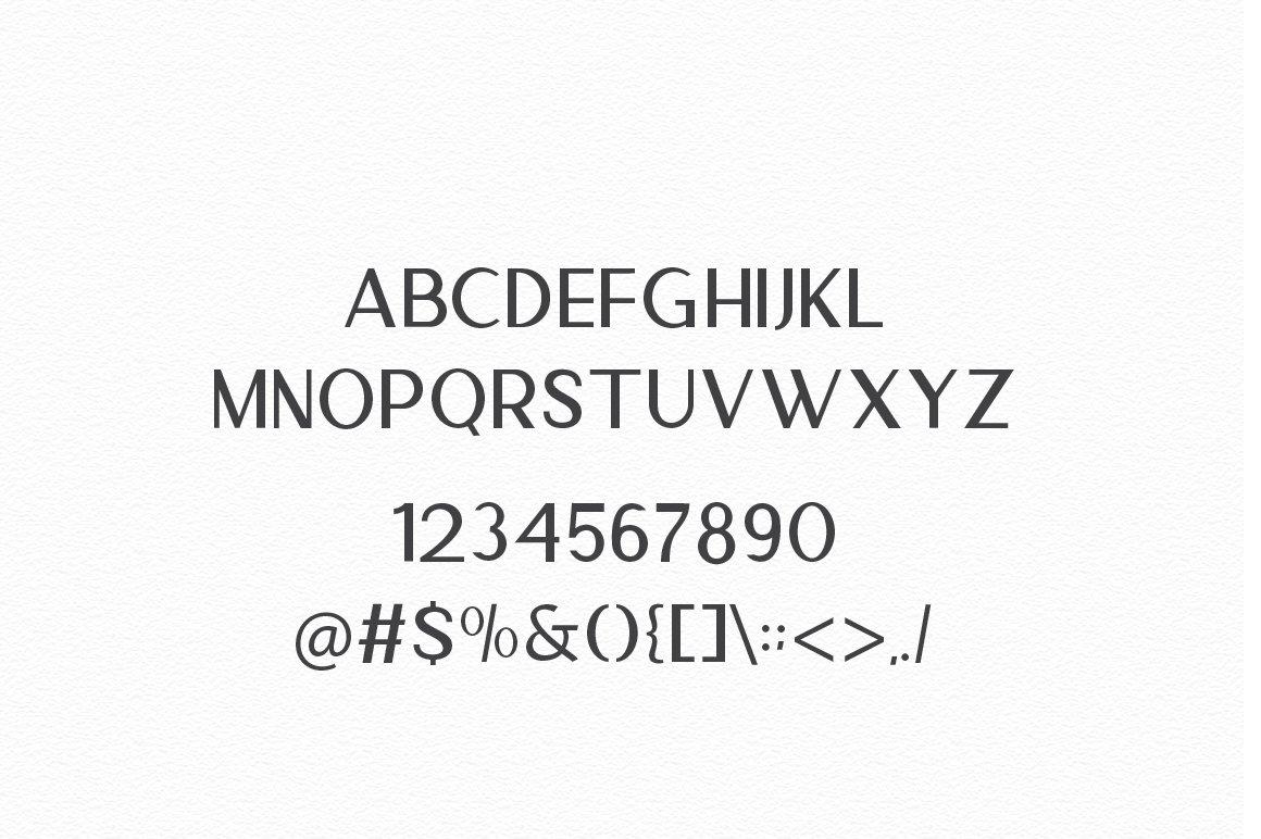 Anamortee // Modern Calligraphy Font example image 12