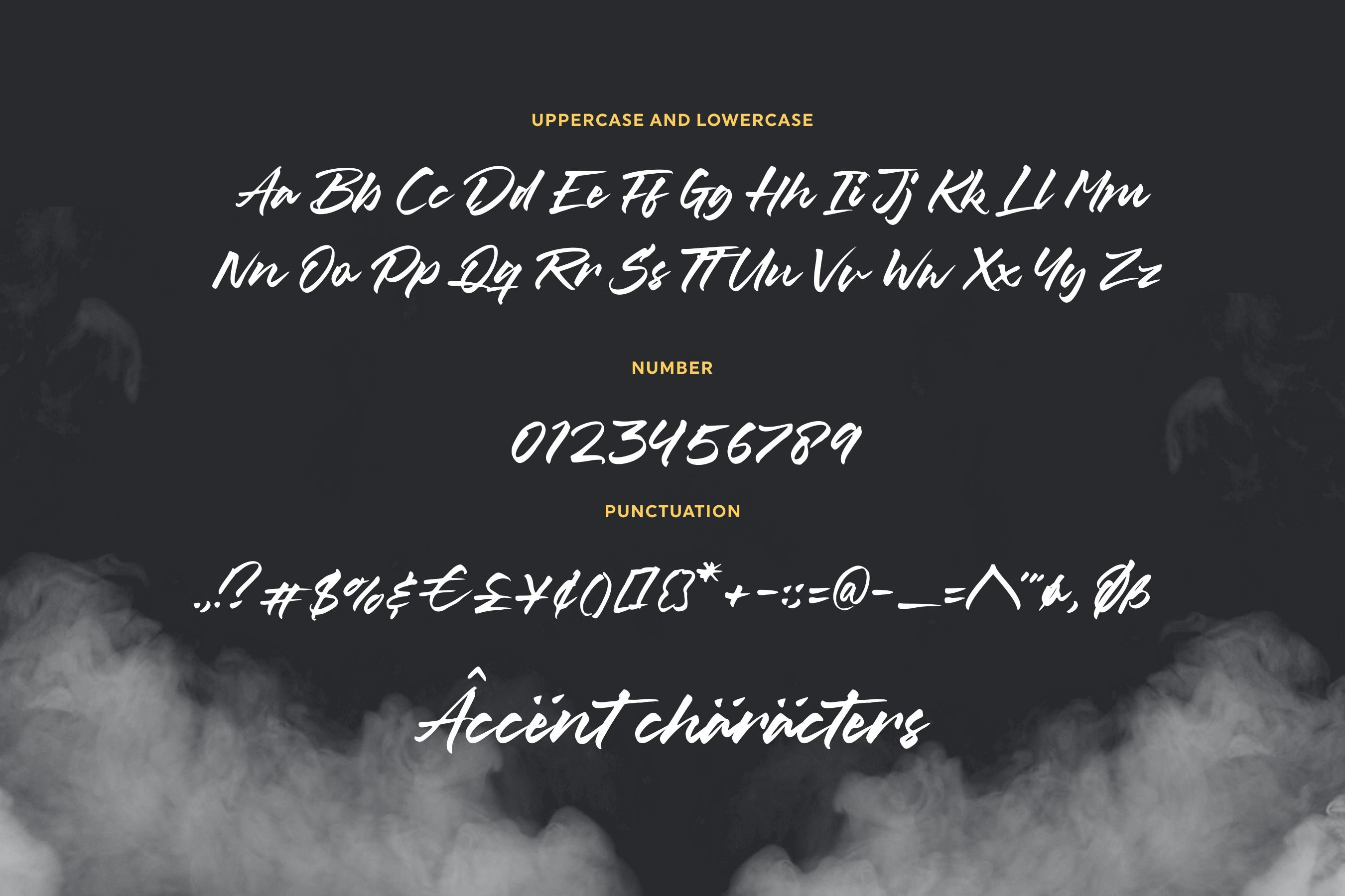 Misty Black Stylish Bold Script Font example image 6