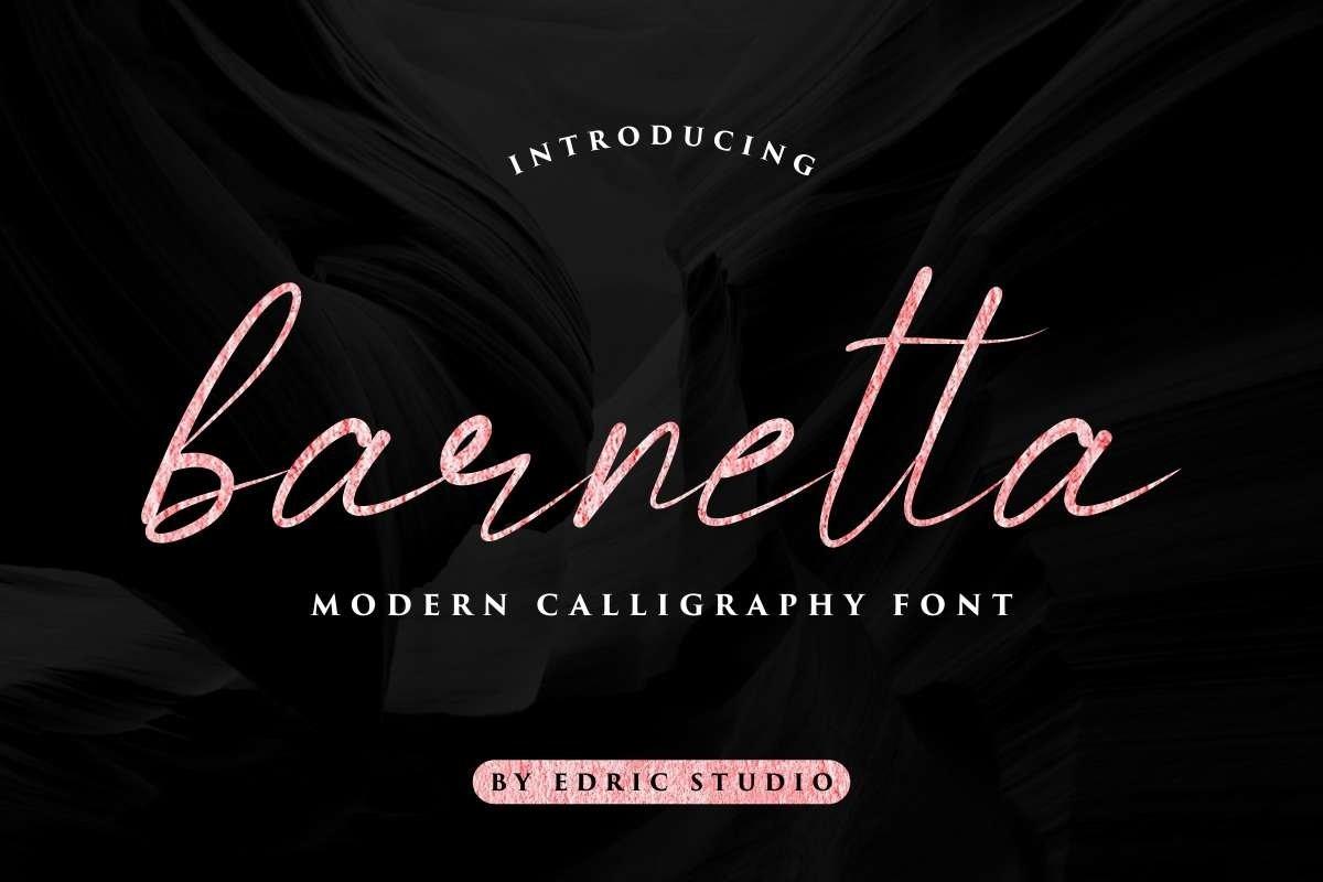 Barnetta example image 1