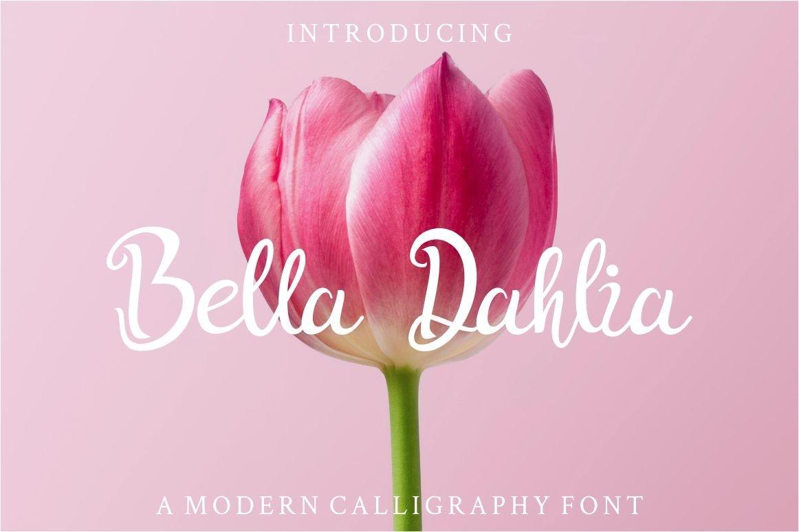 Bella Dahlia example image 1