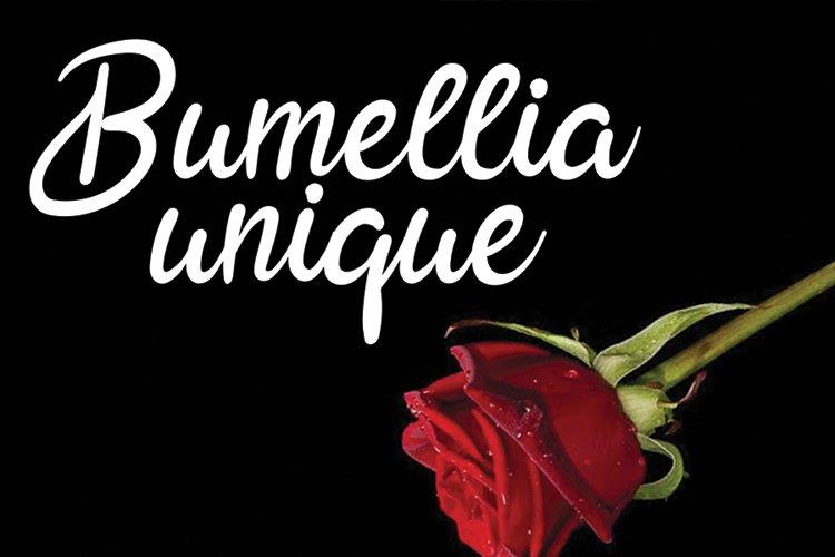 Ralliguta love you example image 5