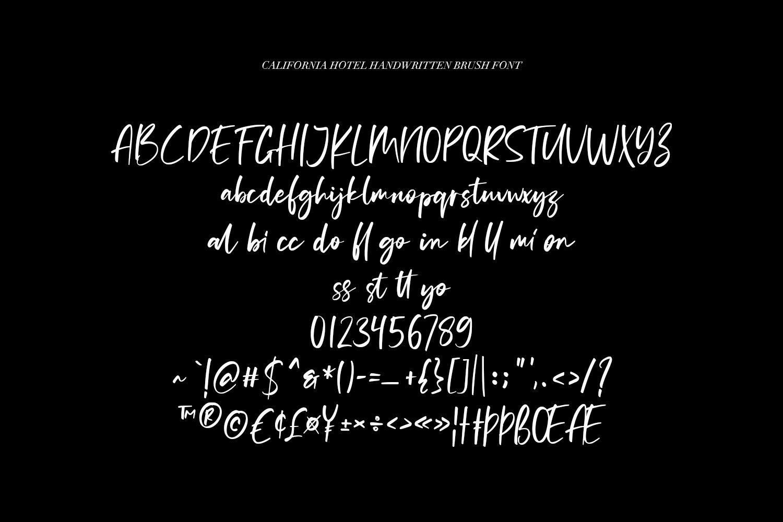 California Hotel - Handwritten Brush Font example image 8