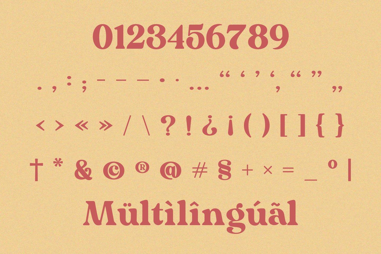 Mogena - Modern Serif Font example image 10