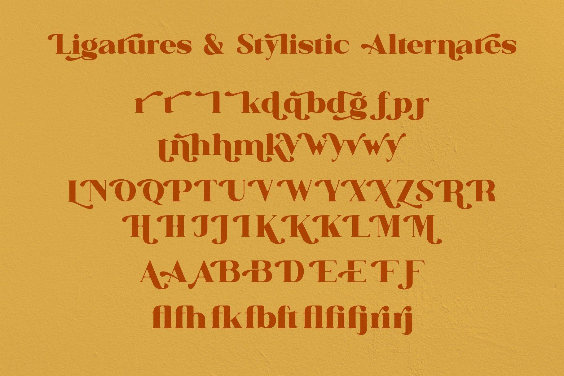 Britonia Sevagus example image 7