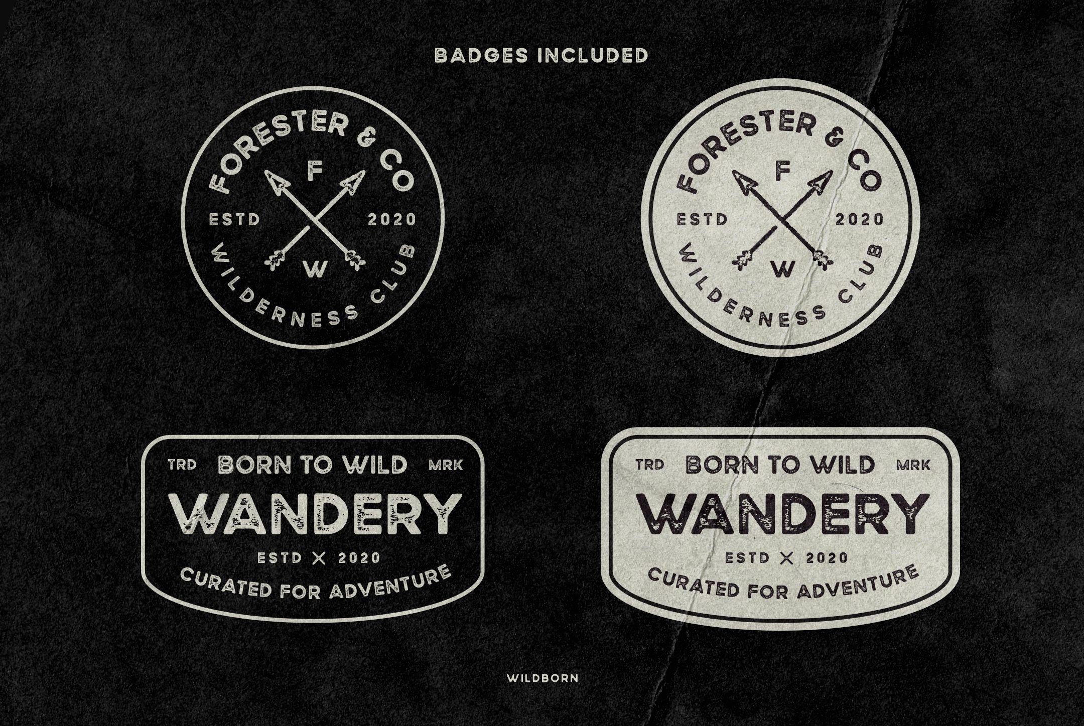 Wildborn Vintage Sans example image 12