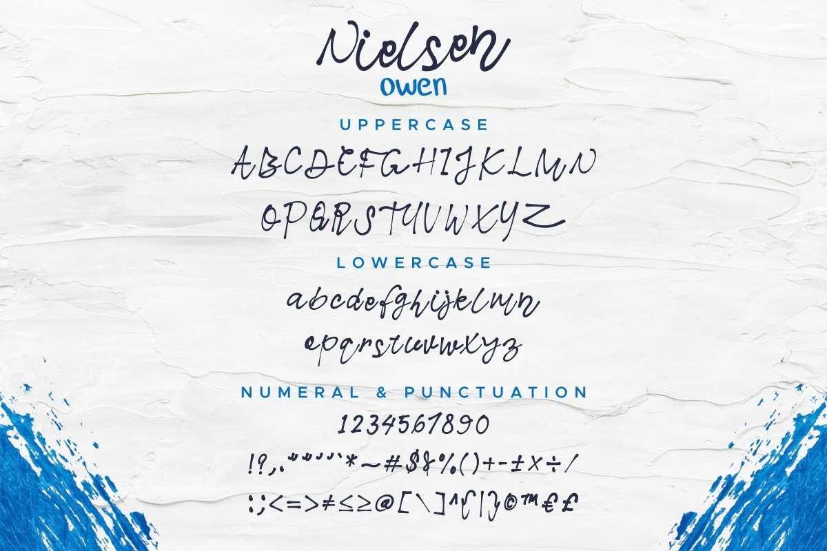 Nielsen Owen example image 9