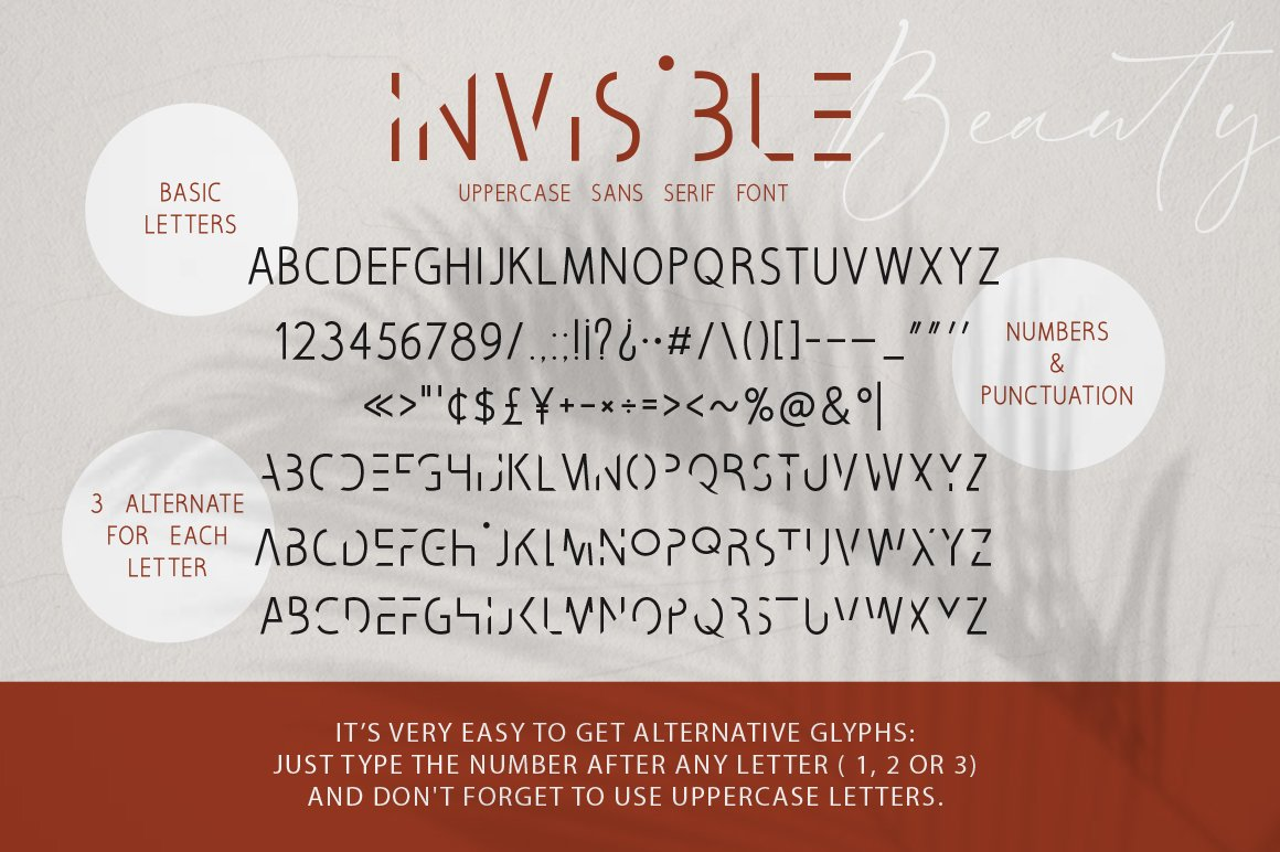 Invisible Beauty. Chic Duo Font. example image 10