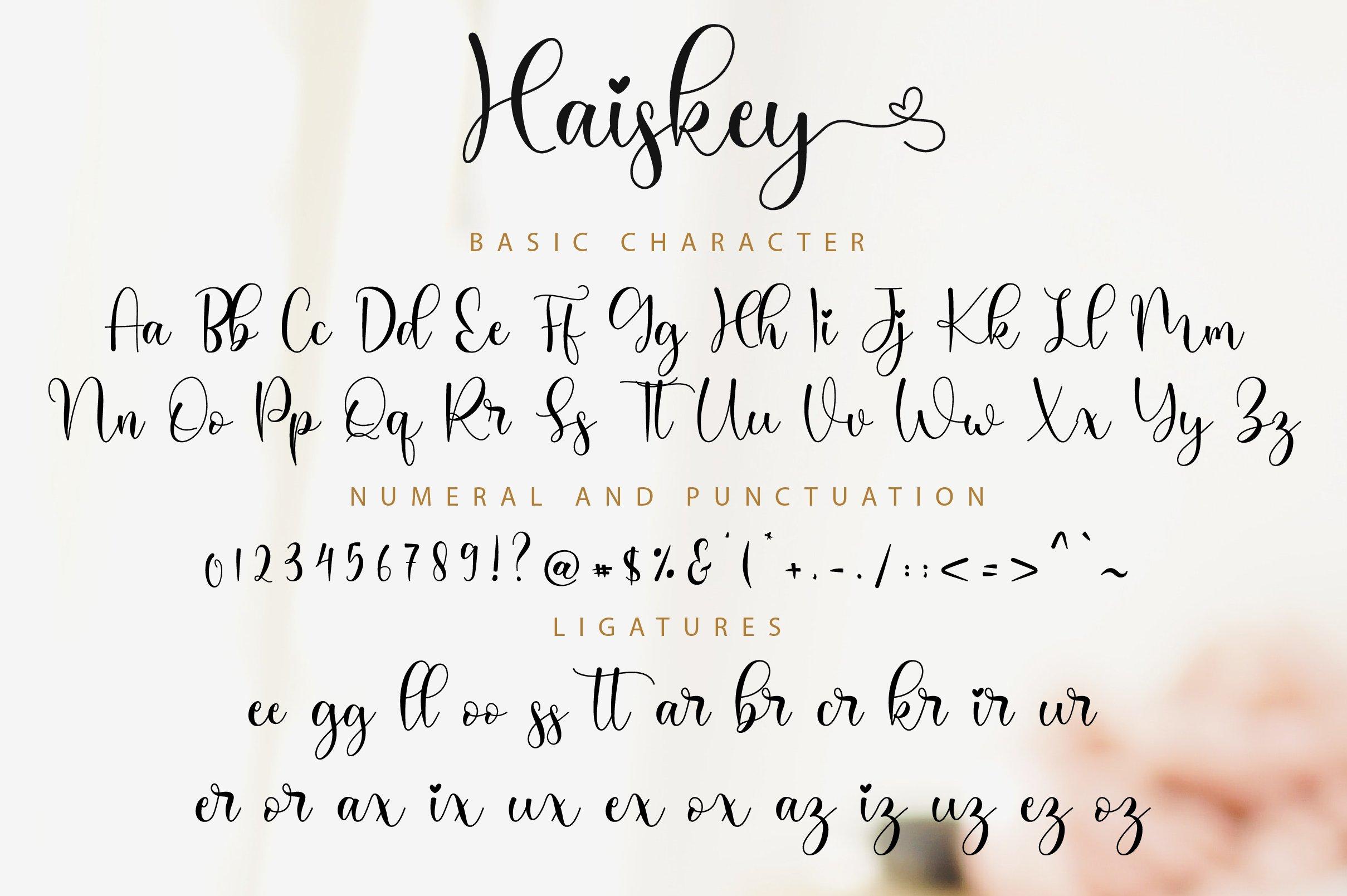 Haiskey - Lovely Script Font example image 11