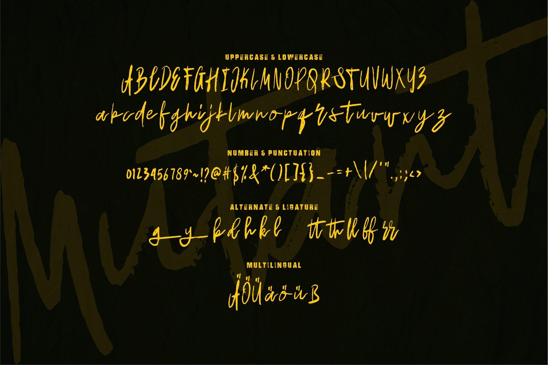 Mutant - Brush Font example image 2
