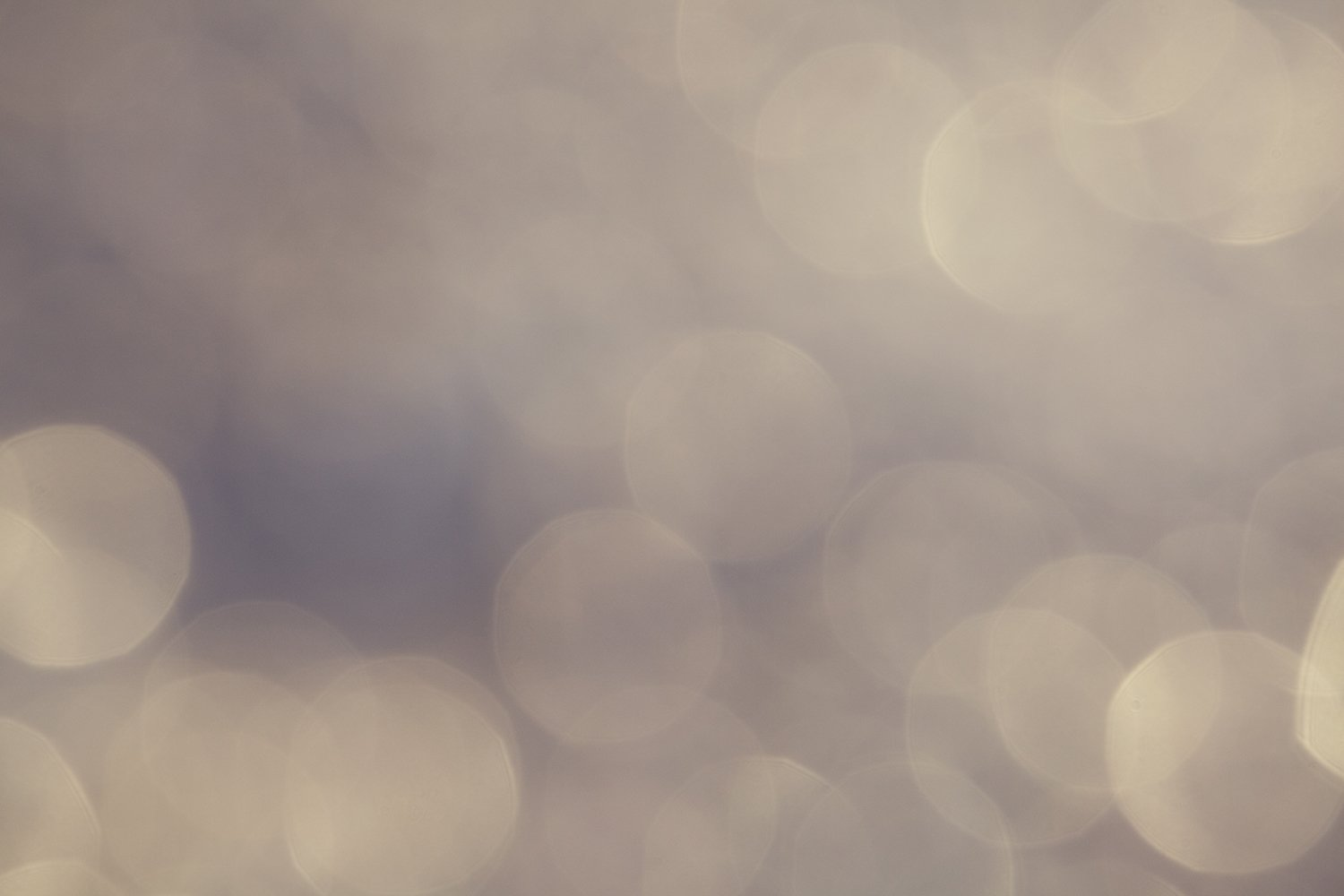 Festive abstract background, colorful bokeh and circles example image 1