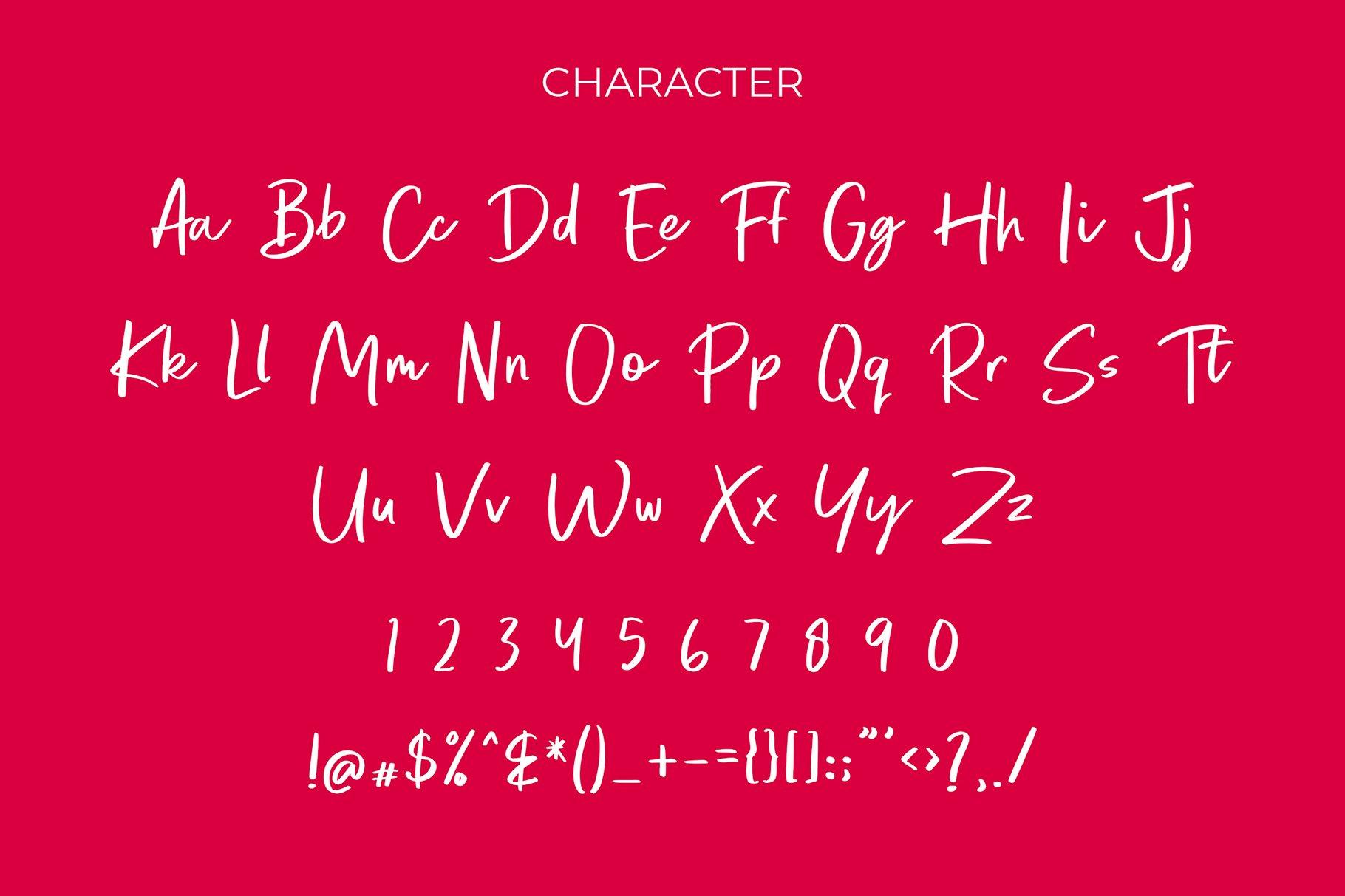 Brondong Modern Script Font example image 6