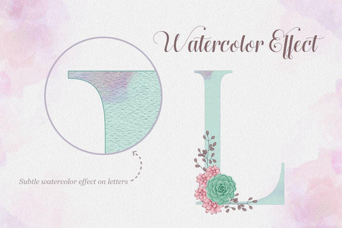 Succulent Alphabet Letters example image 4