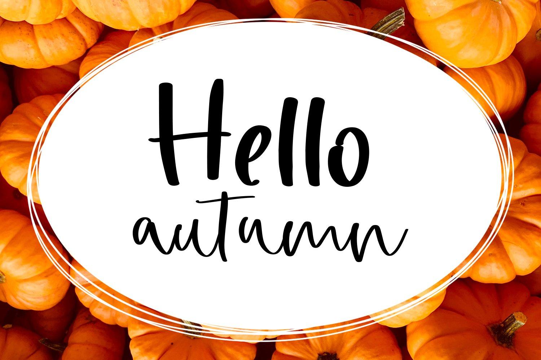 Pumpkin Light Font Duo example image 5