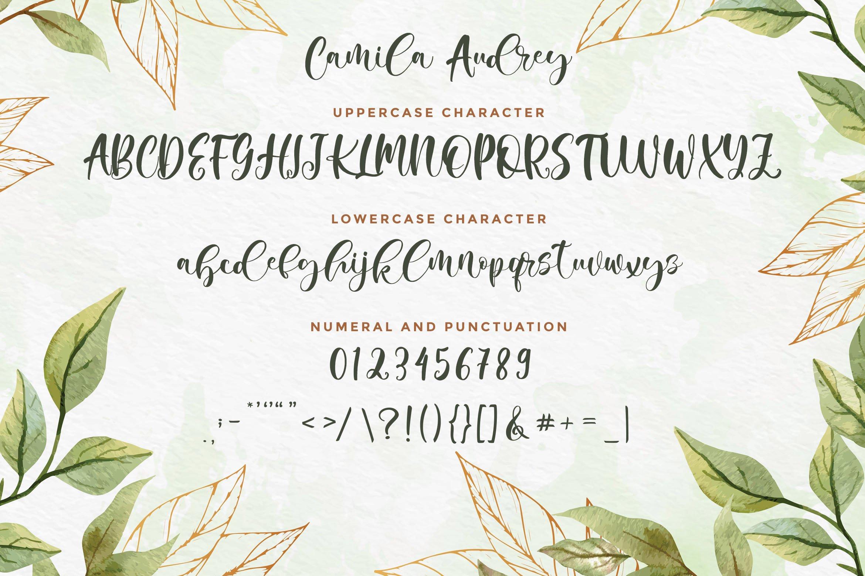 Camila Audrey - Beautiful Script Font example image 5