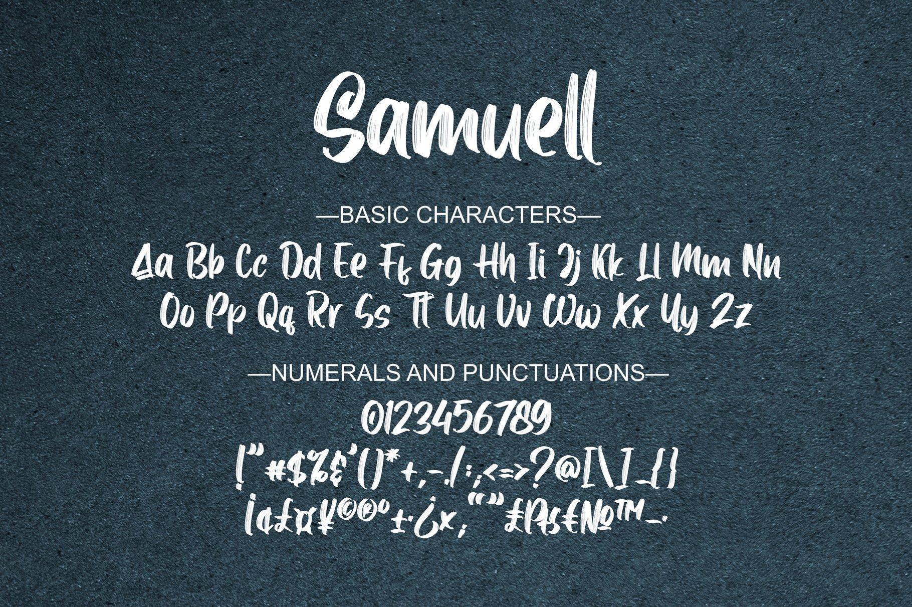Samuell example image 10