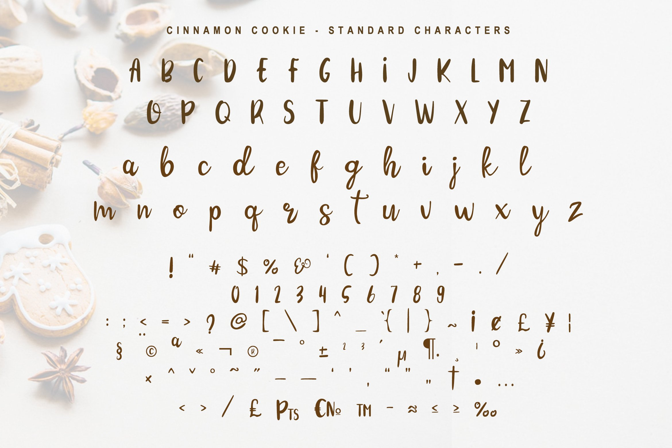 Cinnamon Cookie - Two Style Font example image 5