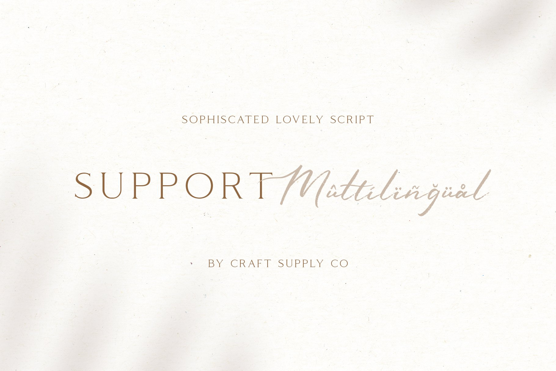 Sophiscated - A Lovely Script Font example image 6