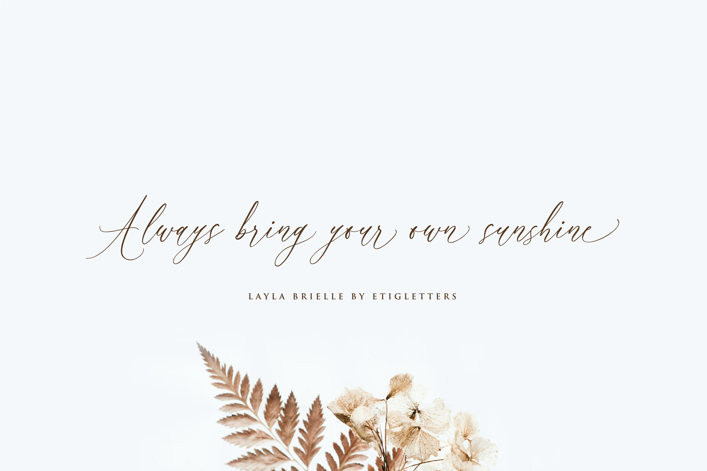 Layla Brielle Calligraphy Font example image 4