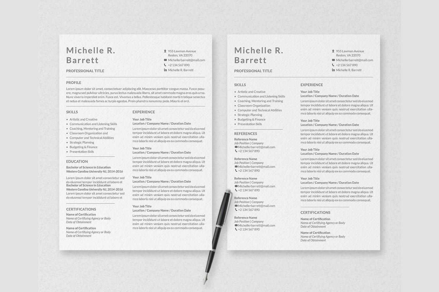 Professional Resume Templates example image 7