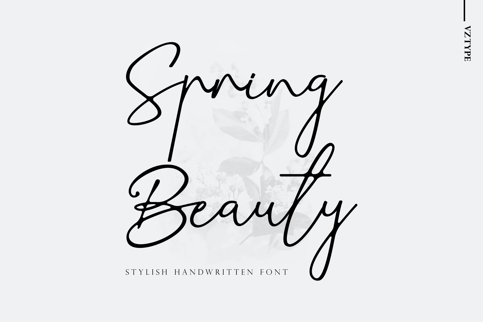 Spring Beauty example image 1
