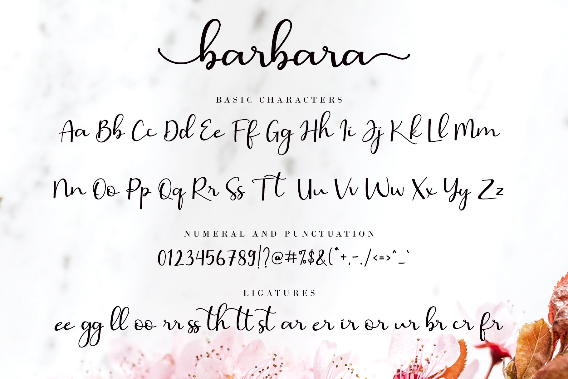 Barbara Calligraphy example image 9