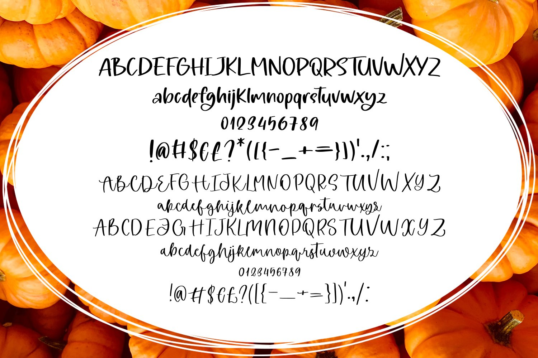 Pumpkin Light Font Duo example image 4