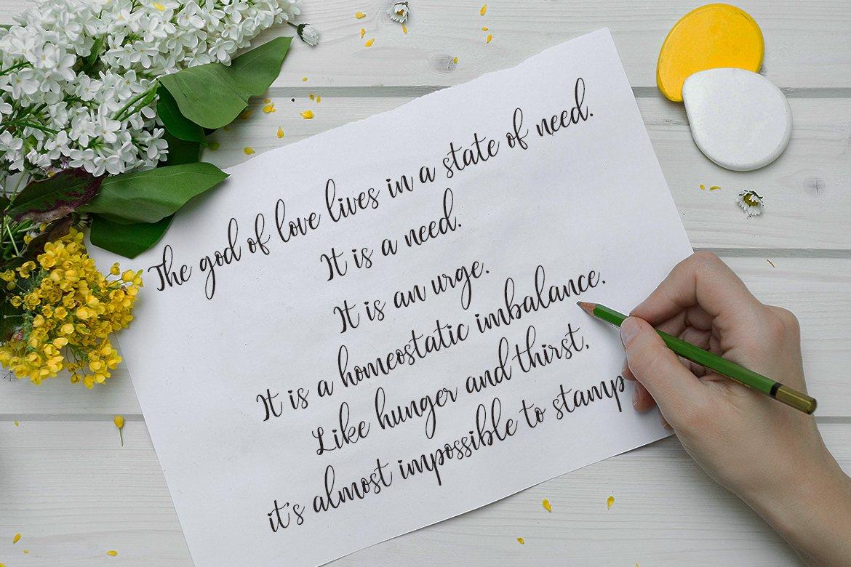 Valentinoa | A Romantic Calligraphy Font example image 4