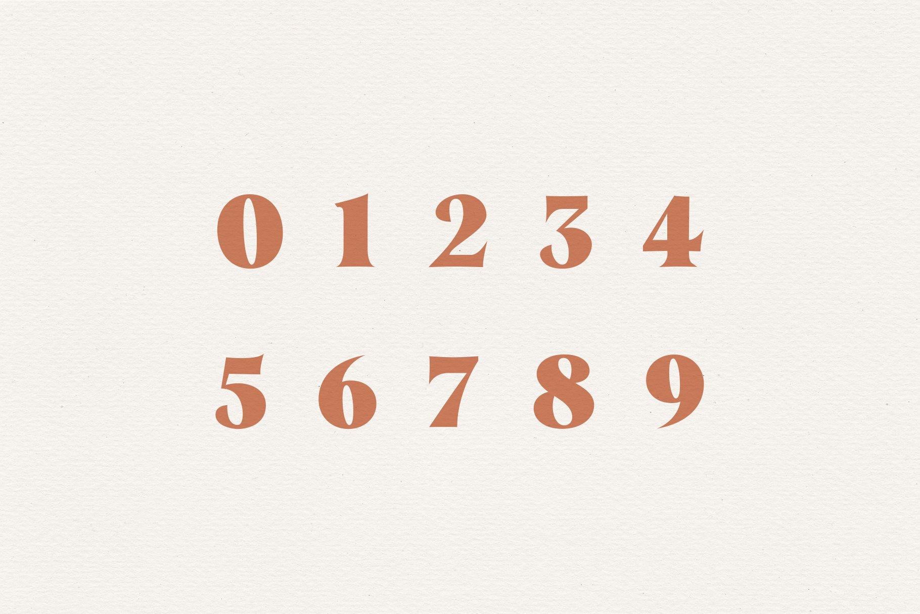 Taurus // A Stylish & Modern Serif example image 9