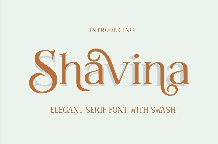 Shavina Serif Font with beauty swash and alternate example image 11