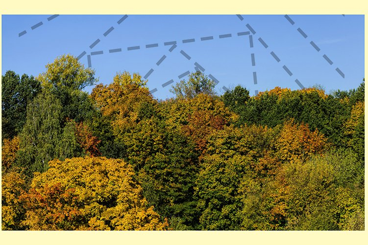 Autumn landscape example image 1