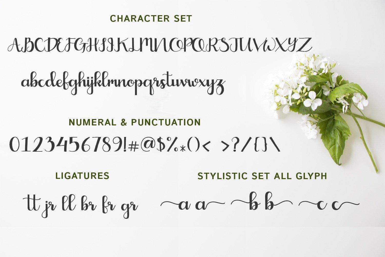 Crayonila Script example image 2