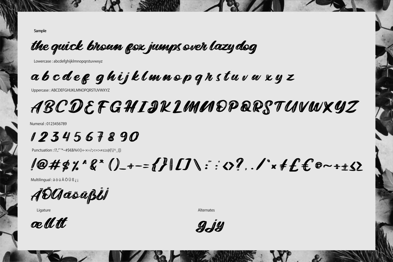 Bright | Modern Rough Script Font example image 6