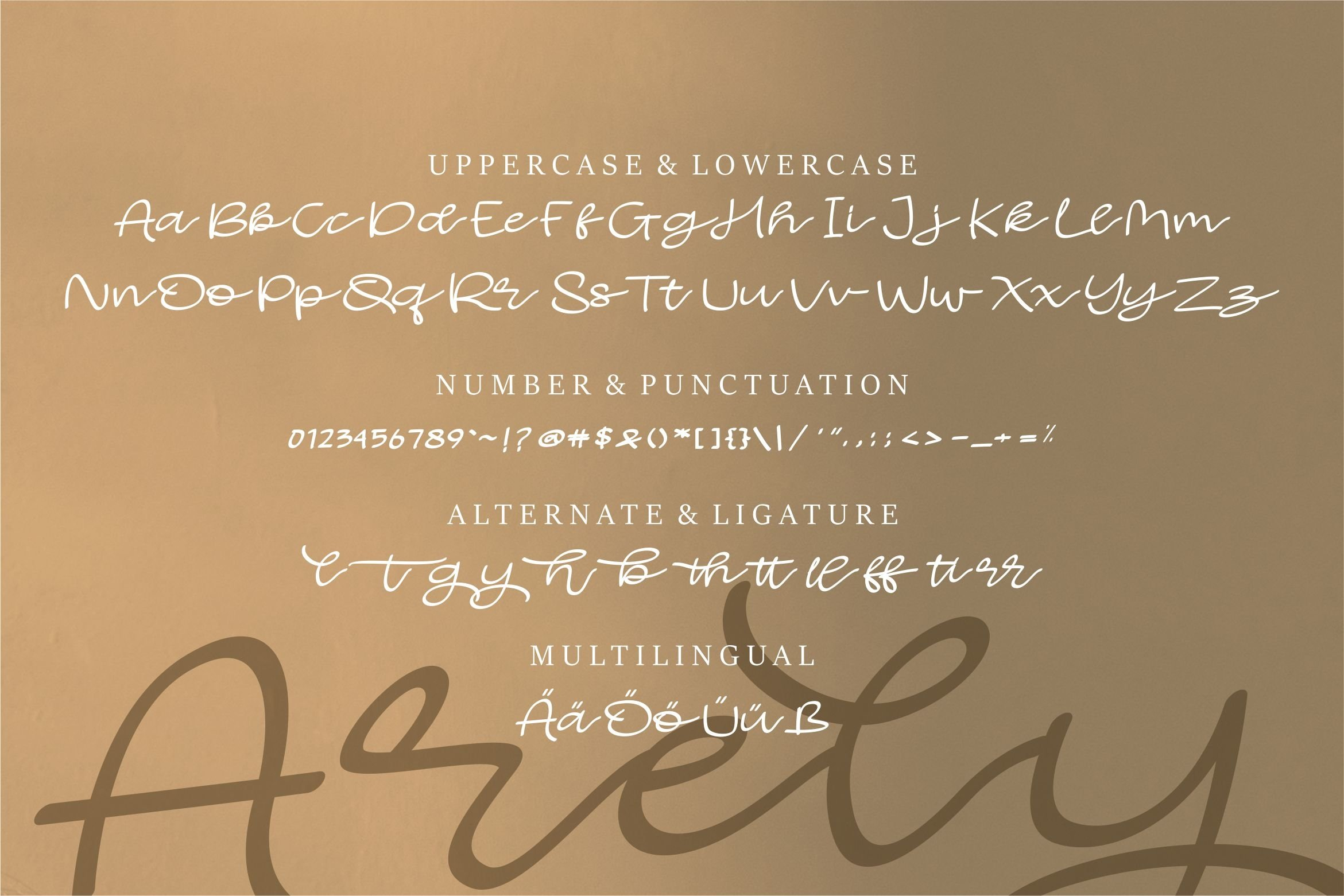 Arely - Beauty Script Font example image 6